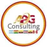 Logo de APG CONSULTING